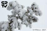 Sněhové variace